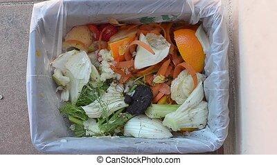 garbage - recycling of garbage