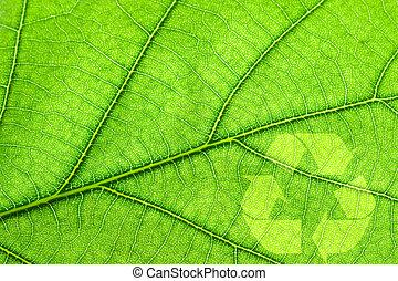 Recycling symbol on green leaf