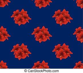 Red Amaryllis on Indigo Blue Background. Christmas Day....