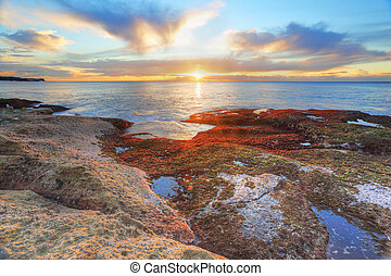 Red and green algae covered rocks at sunrise Coogee, Sydney...