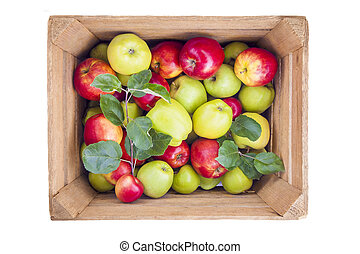 Red and green apples in wooden box
