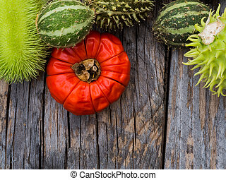 Red and green autumn fruits decoration
