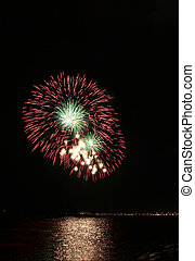 red and green floral fireworks