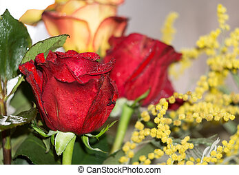 Red and Orange Roses Bouquet