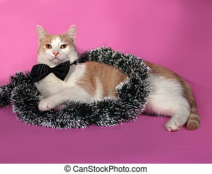 Red and white cat in bow tie wrapped Christmas tinsel sitting on