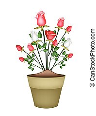 Red and White Roses in Ceramic Flower Pot