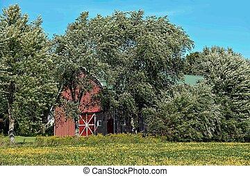 striped barn in tree