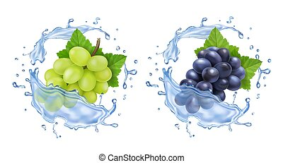 Red and white table grapes in water splash Bunch of wine grapes realistic set