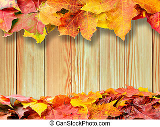 autumn colored fall leaves on wood background