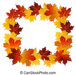 Red and yellow autumn leaves forming border isolated on white background