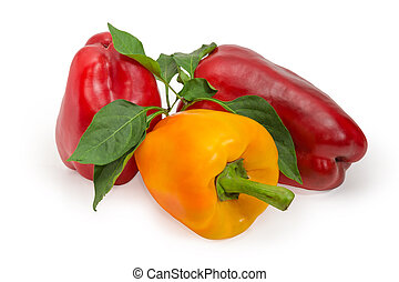 Red and yellow bell peppers and twig with leaves