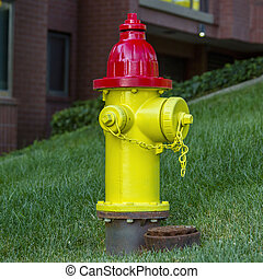 Red and yellow fire hydrant on a grassy slope
