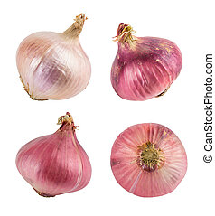 Red and yellow onions isolated on white. With clipping path. Collection.