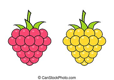 Red and yellow raspberries on white background. Logo design, vector illustration.