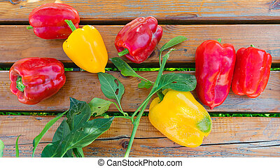 Red and yellow ripe freshly picked peppers
