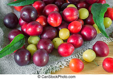 Red and yellow ripe plums on the table.