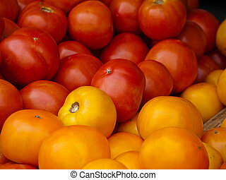 Red and yellow tomatoes from Virginia market