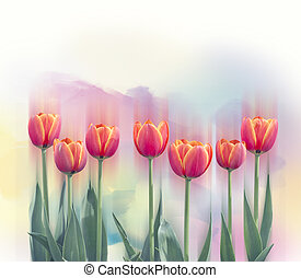 tulip flowers in a row