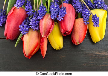 Red and yellow tulips with hyacinth flowers