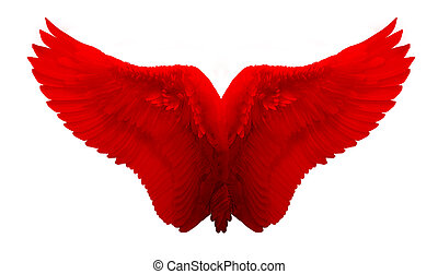 Red angel wing