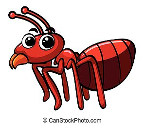 Red ant on white background
