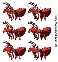 Red ant with different facial expressions illustration