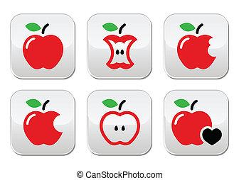 Red apple, apple core, bitten, half