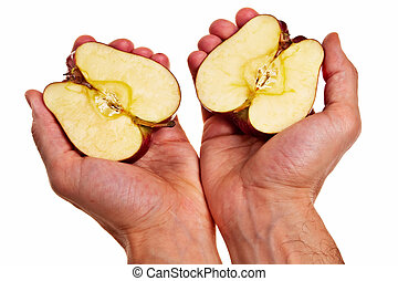 Red apple cut into two parts in male white hands isolated...