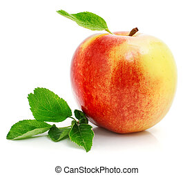 red apple fruit with green leaves