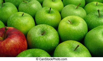 Red Apple In Green Apples - Business Concept - Tracking shot...