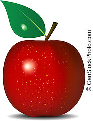 Red apple isolated - Vector illustration of fresh red apple ...