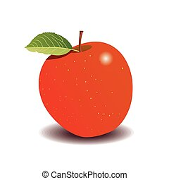 red apple on a white background. vector graphics