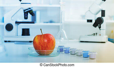 Chemical Laboratory of the Food supply
