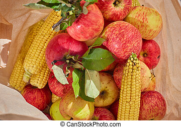 red apples and corn in the bag