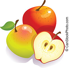 apples stock illustrations 95 191 apples clip art images and rh canstockphoto com apple clipart images apple clip art free