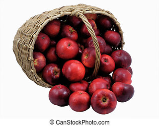 Red apples in a basket - isolated