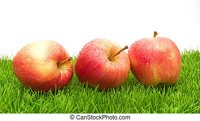 Red Apples on Grass