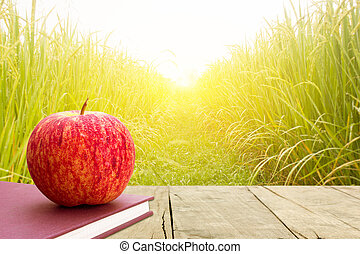 Red apples put on book in rice field, nature food background.