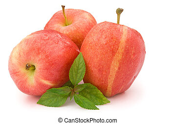 red apples with clipping path
