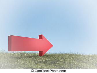 Red arrow in a field