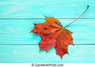 Red autumn leaf over blue wooden background