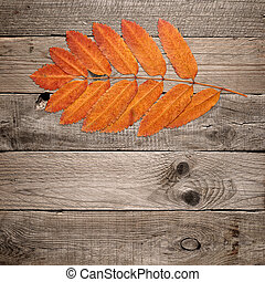 Red autumn leaves on wooden background