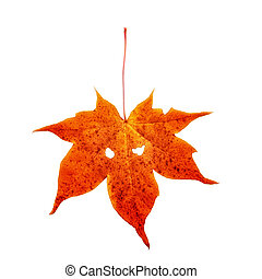 Red autumn maple leaf is located on a white background. There are two eye-like holes on the sheet