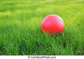 Red ball on green grass.