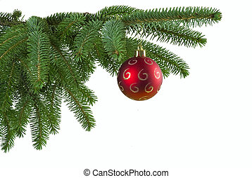 Red ball on spruce branch - Red Christmas ball on green ...
