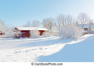 Red barn and beautiful trees in the wintry landscape