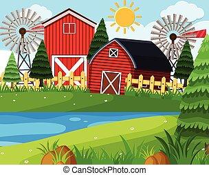 Red barns on farm scene
