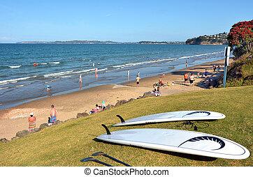 Red Beach in Auckland, New Zealand - AUCKLAND, NZL - JAN 04...