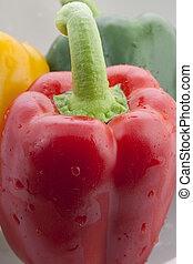 Red Bell Pepper