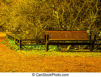 Red bench in the park at night